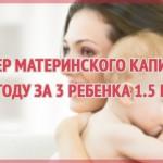 Размер материнского капитала в 2019 году за 3 ребенка 1.5 млн руб