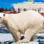 Внутренний туризм получит налоговые льготы?